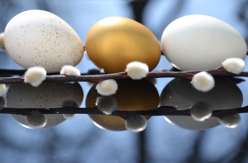 jaja i bazie