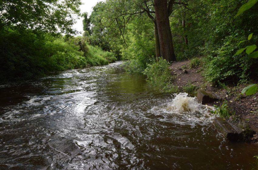 wzburzona rzeka Jeziorka